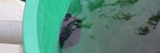 esoviz-tartaly-feltoltese-proba-03