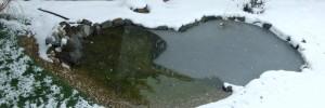 Mi lesz ha befagy a tó?