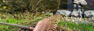 A sárgásbarna tóvíznek egyik legfőbb oka lehet a belehullott sok falevél.